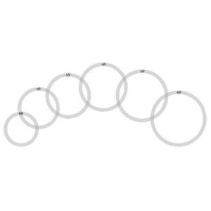GO OR/SET O-ring set 10/12/13/14/16 clear